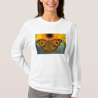 USA, WA, Sammamish, Tropical Butterfy 2 T-Shirt