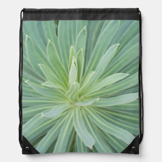 USA, Washington, Bellevue, Bellevue Botanical 4 Drawstring Bag