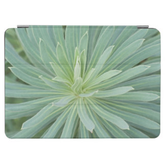 USA, Washington, Bellevue, Bellevue Botanical 4 iPad Air Cover