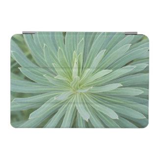 USA, Washington, Bellevue, Bellevue Botanical 4 iPad Mini Cover