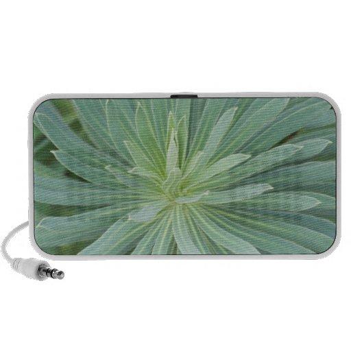 USA, Washington, Bellevue, Bellevue Botanical 4 Notebook Speakers