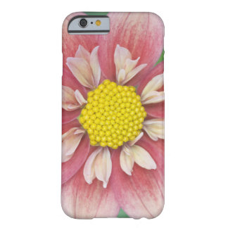USA, Washington, Bellevue, Bellevue Botanical Barely There iPhone 6 Case