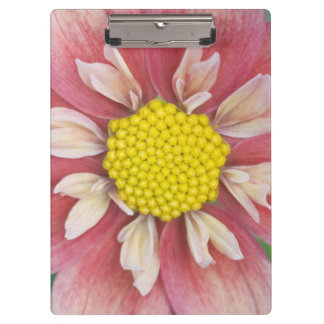 USA, Washington, Bellevue, Bellevue Botanical Clipboard