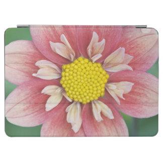 USA, Washington, Bellevue, Bellevue Botanical iPad Air Cover