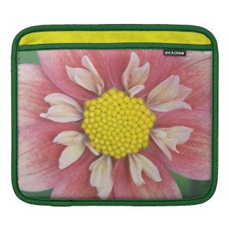 USA, Washington, Bellevue, Bellevue Botanical iPad Sleeve