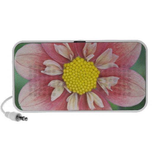 USA, Washington, Bellevue, Bellevue Botanical iPhone Speaker