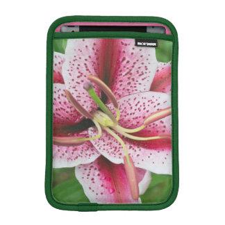 USA, Washington, Bellevue, Lily iPad Mini Sleeve