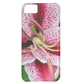 USA, Washington, Bellevue, Lily iPhone 5C Case
