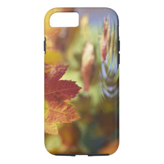 USA, Washington, Bellingham, Close-up of autumn iPhone 8/7 Case