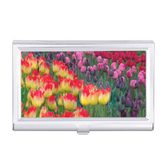 USA, Washington. Blooming Tulips 2 Business Card Holder