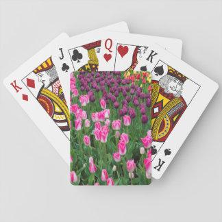 USA, Washington. Blooming Tulips Playing Cards