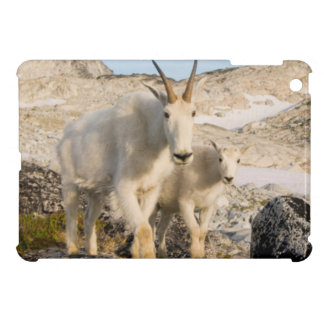 USA, Washington, Cascade Range 2 Case For The iPad Mini