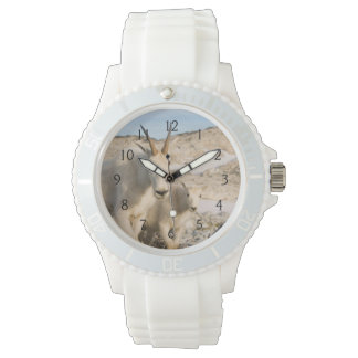 USA, Washington, Cascade Range 2 Wrist Watches