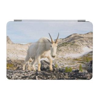 USA, Washington, Cascade Range 3 iPad Mini Cover