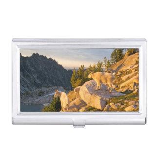 USA, Washington, Cascade Range 4 Business Card Holder