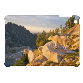 USA, Washington, Cascade Range 4 iPad Mini Case