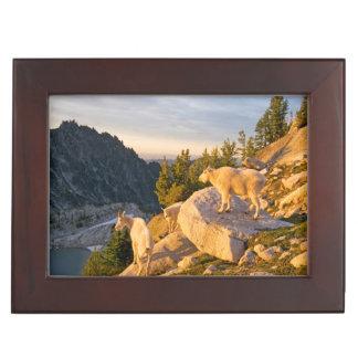 USA, Washington, Cascade Range 4 Keepsake Box