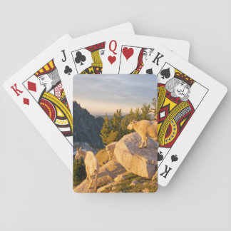 USA, Washington, Cascade Range 4 Playing Cards