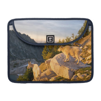 USA, Washington, Cascade Range 4 Sleeve For MacBooks