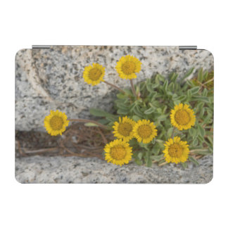 USA, Washington, Cascade Range 5 iPad Mini Cover