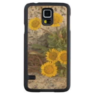 USA, Washington, Cascade Range 5 Maple Galaxy S5 Case