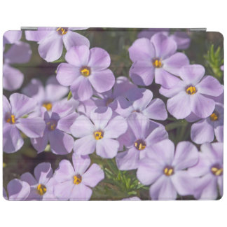 USA, Washington, Cascade Range 6 iPad Cover