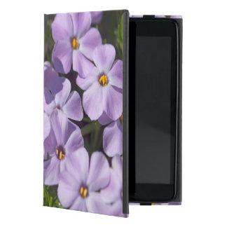 USA, Washington, Cascade Range 6 iPad Mini Cover