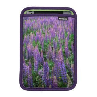 USA, Washington, Clallam County, Lupine iPad Mini Sleeve