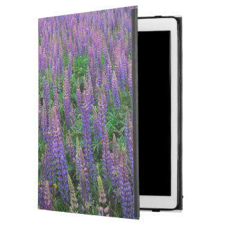 "USA, Washington, Clallam County, Lupine iPad Pro 12.9"" Case"