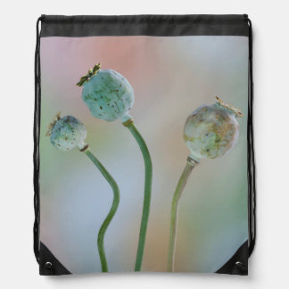 USA, Washington. Close-Up Of Colorful Poppy Seed Drawstring Bag