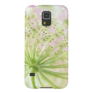 USA, Washington, Close-up of cow parsnip Case For Galaxy S5