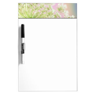 USA, Washington, Close-up of cow parsnip Dry Erase White Board