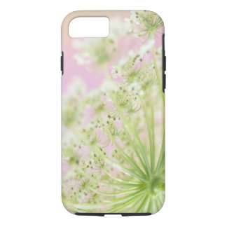 USA, Washington, Close-up of cow parsnip iPhone 8/7 Case