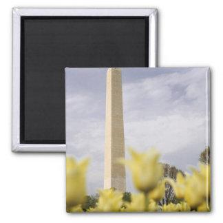USA, Washington, D.C. The Washington Monument as Magnet
