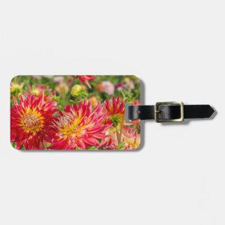 USA, Washington. Dahlia Flowers In Garden Luggage Tag