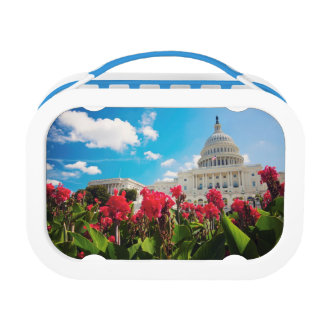 USA, Washington DC, Capitol Building Lunch Box