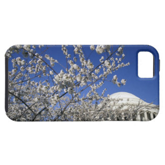 USA, Washington DC. Cherry Blossom Festival and 2 iPhone 5 Covers