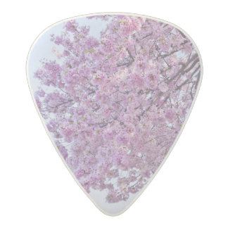 USA, Washington DC, Cherry tree in bloom Acetal Guitar Pick