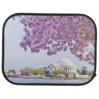 USA, Washington DC, Cherry tree in bloom Car Mat