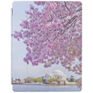 USA, Washington DC, Cherry tree in bloom iPad Cover