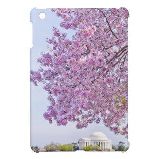 USA, Washington DC, Cherry tree in bloom iPad Mini Covers