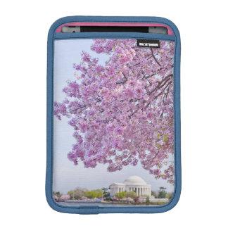 USA, Washington DC, Cherry tree in bloom iPad Mini Sleeve