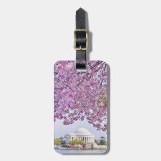 USA, Washington DC, Cherry tree in bloom Luggage Tag