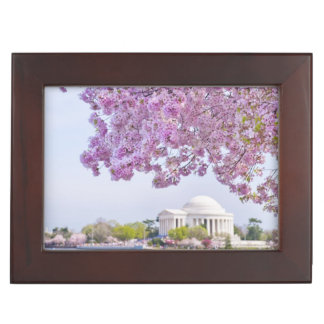 USA, Washington DC, Cherry tree in bloom Memory Boxes