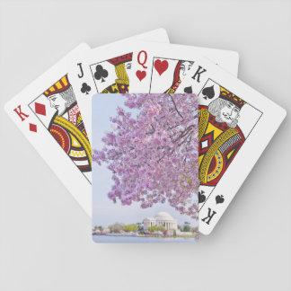 USA, Washington DC, Cherry tree in bloom Playing Cards