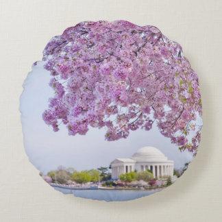 USA, Washington DC, Cherry tree in bloom Round Cushion