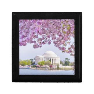 USA, Washington DC, Cherry tree in bloom Small Square Gift Box
