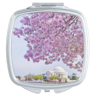 USA, Washington DC, Cherry tree in bloom Vanity Mirror