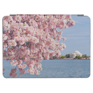 USA, Washington DC, Cherry tree iPad Air Cover