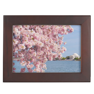 USA, Washington DC, Cherry tree Keepsake Box